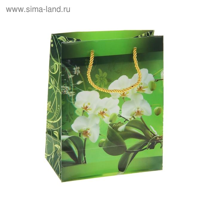 """Пакет пластиковый, 3D рисунок """"Цветы орхидеи"""""""