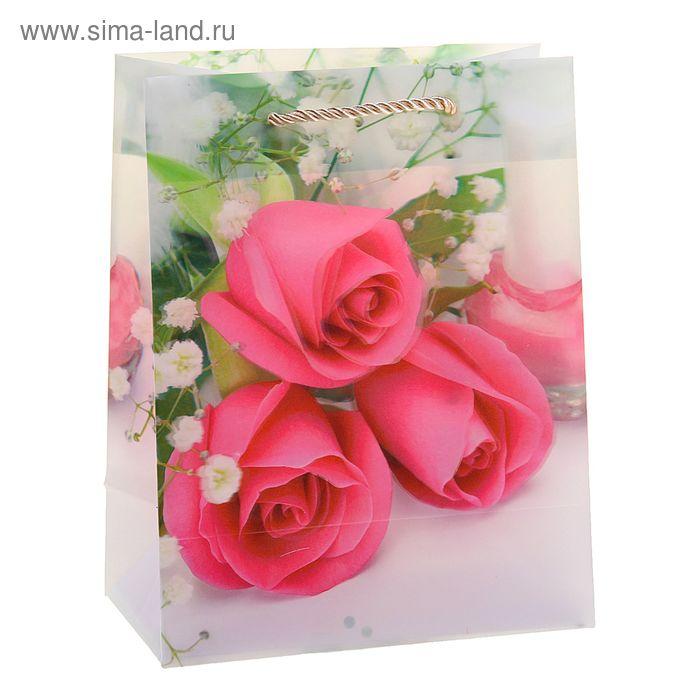 """Пакет пластиковый, 3D рисунок """"Розовые розы"""""""