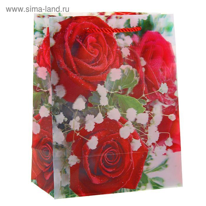 """Пакет пластиковый, 3D рисунок """"Красные розы"""""""