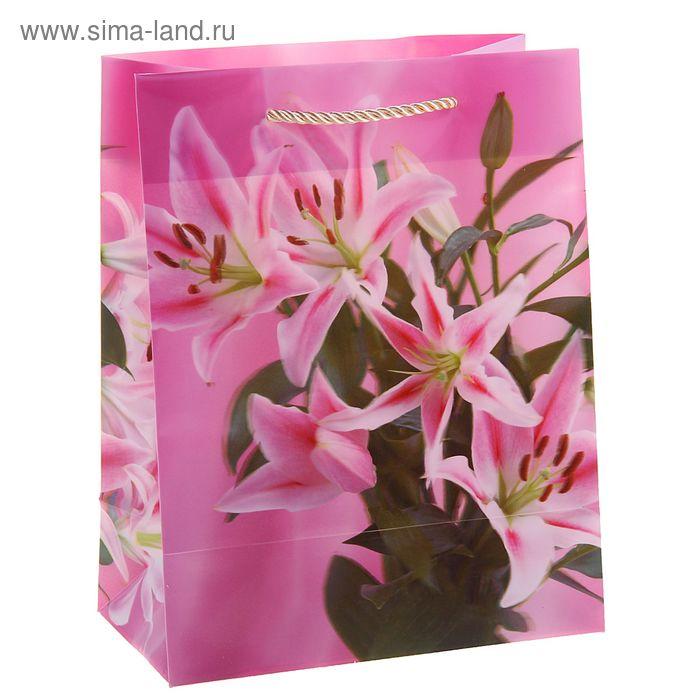"""Пакет пластиковый, 3D рисунок """"Цветы лилии"""""""