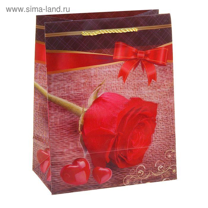 """Пакет пластиковый, 3D рисунок """"Роза"""""""