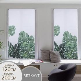 Штора рулонная «Тропики», блэкаут, 120×200 см
