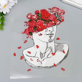 "Термонаклейка ""Аполлон, вазон с алыми розами"" 20х18,5 см"
