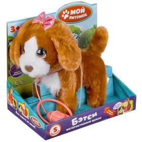 Интерактивная игрушка «Щенок Бэтси», 22 см, ходит, озвуч. Пляцковского М.С