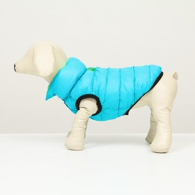 Куртка для собак двухсторонняя, XL (ДС 72 , ОШ 68 , ОГ 92 ),  бирюзовая/салатовая