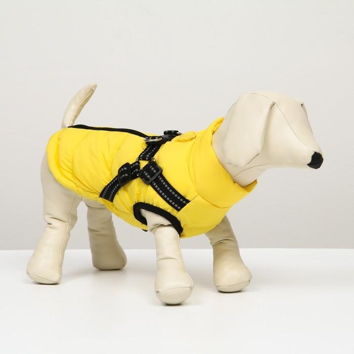Куртка для собак со шлейкой,  размер 26 (ДС 48 см, ОГ 74 см, ОГ 53 см),  лимонная - фото 3805467