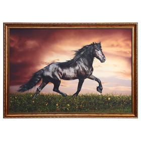 """Картина велюр """"Фризская лошадь"""" 100х70 (107х77)см"""