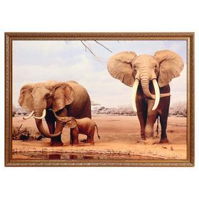 """Картина велюр """"Африканские слоны"""" 100х70 (107х77)см"""