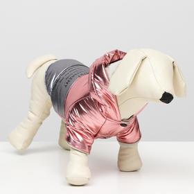 "Куртка для собак ""Космонавт"", размер XS (ДС 17, ОШ 18-22 ОГ 27-32), розово-серебряная"