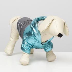 """Куртка для собак """"Космонавт"""", размер XS (ДС 17, ОШ 18-22 ОГ 27-32), голубо-серебряная"""