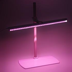 Фитосветильник «Здоровья Клад», 220 В, 560 × 220 × 560 мм