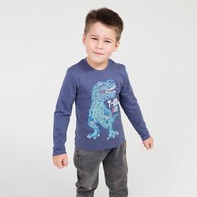Лонгслив для мальчика, цвет тёмно-синий, рост 110 (5)