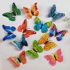 """Магнит """"Бабочка с золотыми бликами"""" с двойными крылышками"""