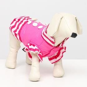 Курточка для собак с воланами, размер 6 (ДС 43,ОШ 44, ОГ 60 см), розовая