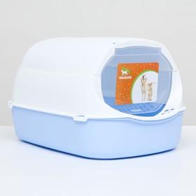 Туалет-домик с фильтром, 43 х 32 х 28 см, бело-синий