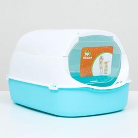 Туалет-домик с фильтром, 43 х 32 х 28 см, бело-голубой
