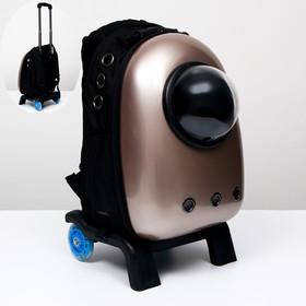 Рюкзак с подставкой, телескопической ручкой и окном для обзора, 32 х 26 х 53 см, золотистый   697157
