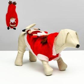 Куртка на кнопочках с меховой отделкой Santa, XS