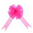 """Бант-шар №2,7 """"Лёгкость"""", цвет розовый"""