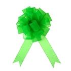 """Бант-шар №5 """"Лёгкость"""", цвет зелёный"""