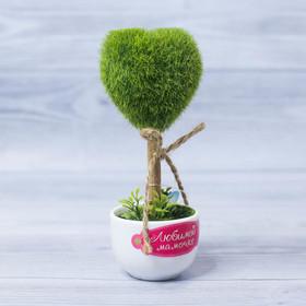Декоративное мини–дерево «Любимой мамочке», 8 х 17 см Ош