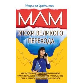 МЛМ эпохи великого перехода. Брыкалова Марина
