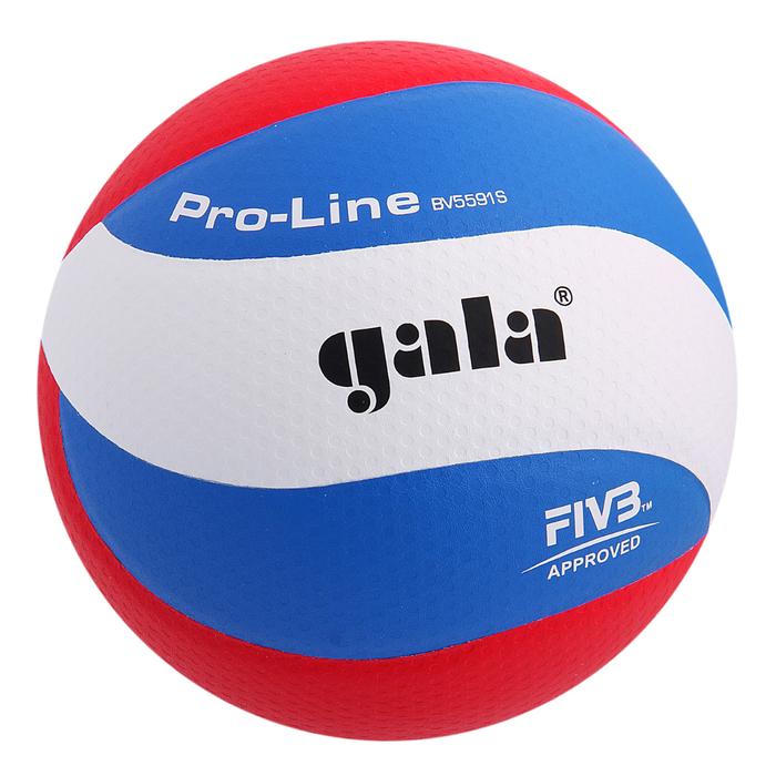 Мяч волейбольный Gala Pro-Line 10 FIVB, BV5591S, размер 5, клееный