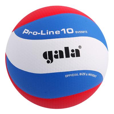 Мяч волейбольный Gala Pro-Line10, BV5581S, размер 5