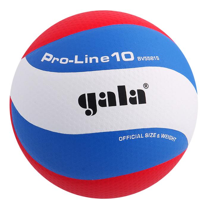 Мяч волейбольный Gala Pro-Line10, BV5581S, размер 5, клееный