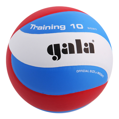 Мяч волейбольный Gala Training 10, BV5561S, размер 5