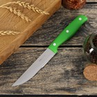 """Нож """"Эксперт"""" лезвие 10,5 см, цвета МИКС"""