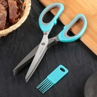 Ножницы кухонные для зелени Доляна «Кольца», 19 см, цвет МИКС - фото 646634