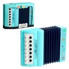 Музыкальная игрушка аккордеон «Музыкальный взрыв», 13 клавиш, работает от батареек, цвета МИКС