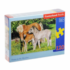 Пазлы «Лошади», 120 элементов