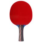 Ракетка для настольного тенниса BOSHIKA, 4 звезды, в чехле
