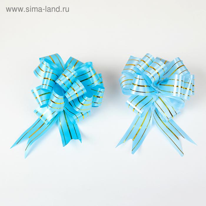 """Бант-шар №3 """"Золотое сечение"""", цвет МИКС"""