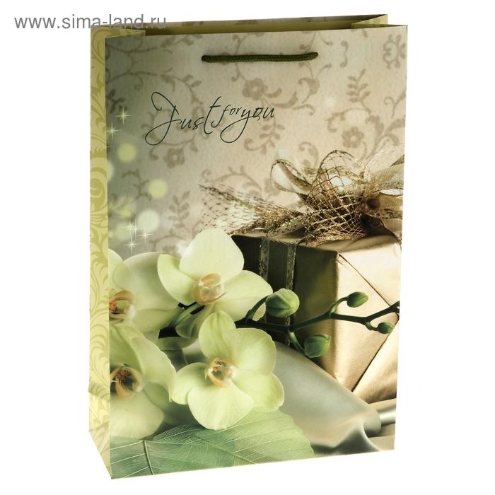 """Пакет ламинированный """"Орхидея с подарком"""""""