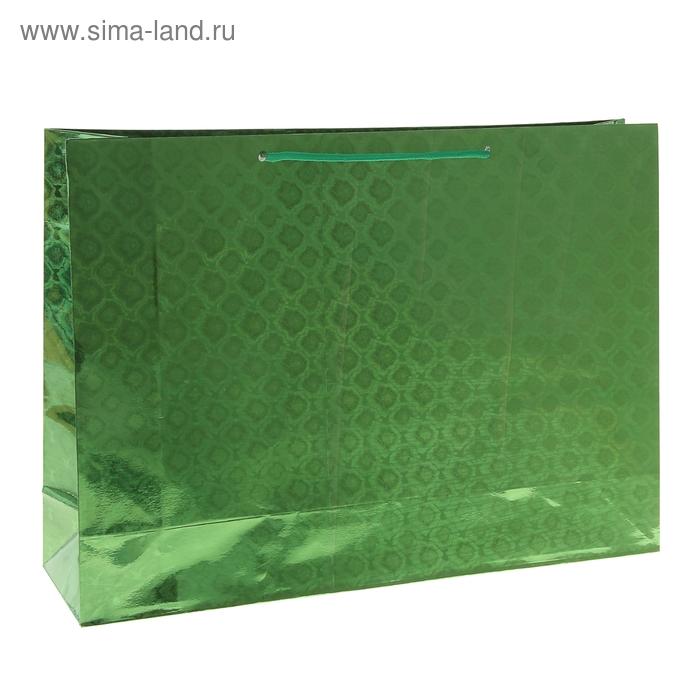 Пакет голографический, цвет зелёный