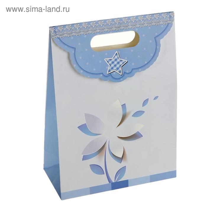 """Пакет с клапаном """"Цветок"""", цвет голубой"""