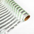 """Органза """"Серебряная полоса"""", светло-зелёный, 0,48 х 4,5 см"""