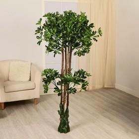 Дерево искусственное 'Двойная крона' Ош