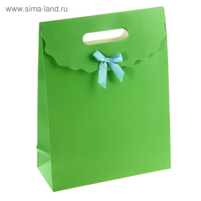 Пакет с клапаном, зелёный