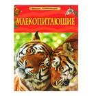 Детская энциклопедия «Млекопитающие»