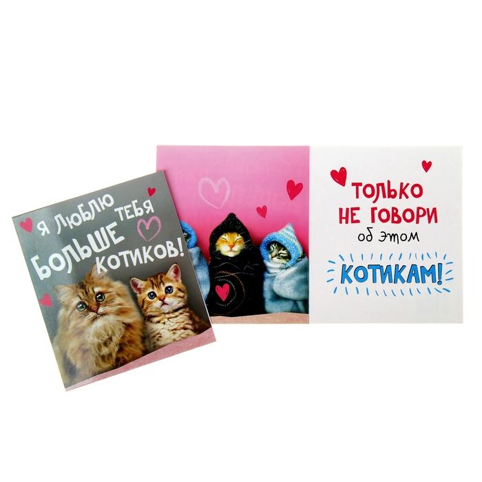 """Открытка-валентинка """"Котики"""", 12 х 14 см"""