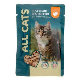 Влажный корм All cats для кошек, индейка в соусе, пауч, 85 г Ош