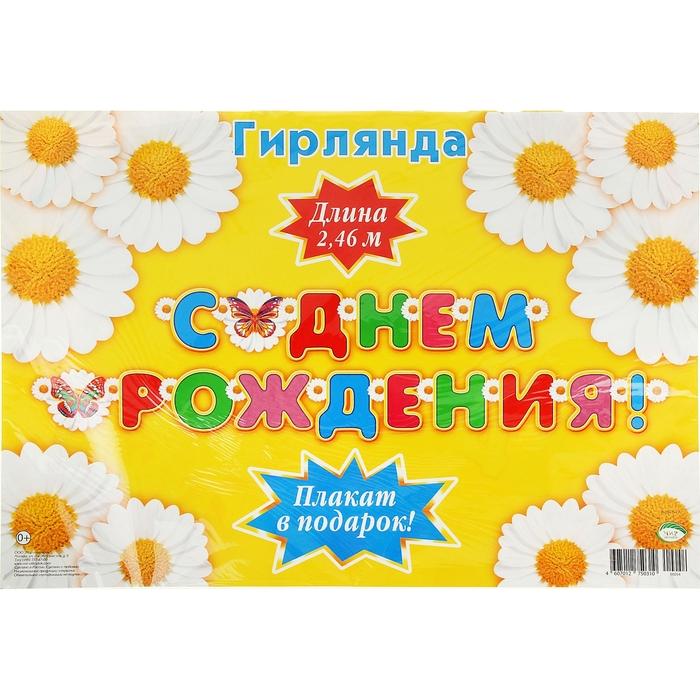 """Гирлянда с плакатом А3 """"С Днем Рождением!"""" ромашки, 240 см"""