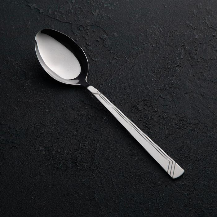 Ложка столовая «Аппетит», h=19,5 см, толщина 2 мм - фото 308068183