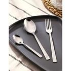 Набор столовых приборов «Аппетит», 18 предметов, толщина 2 мм - фото 308170594
