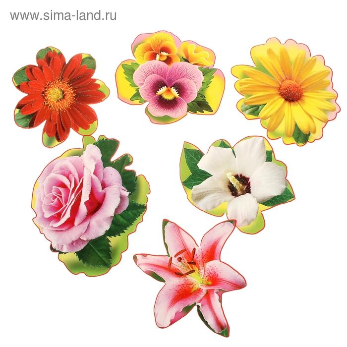 Цветы на клейкой ленте 6 видов по 10 шт