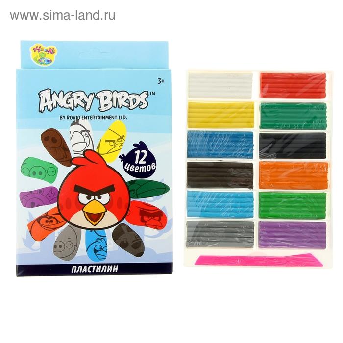 Пластилин 12 цветов 240гр Angry Birds